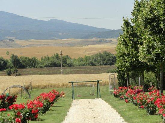 Agriturismi Il Castello La Grancia: Vista desde el lugar