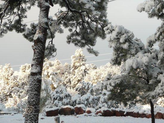 Mountaindale Cabins & RV Resort : April snow at Mountaindale.