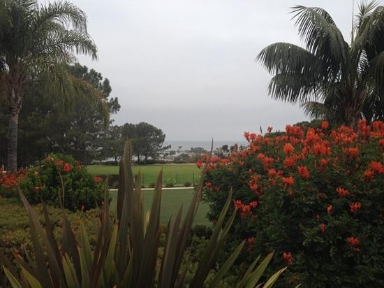 Laguna Cliffs Marriott Resort & Spa: views of the ocean