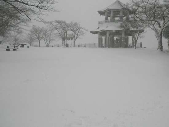 Mt. Koubo: 展望台