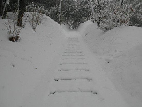 Mt. Koubo: 弘法山への階段