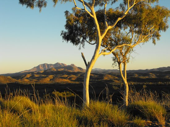 Alice Springs, Avustralya: Mt Sonder at dawn