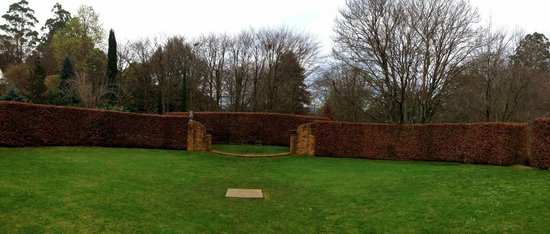 Cloudehill Nursery and Gardens: This hedge is amazing even in the winter