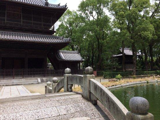 Shofuku-ji Temple: 素敵な庭園