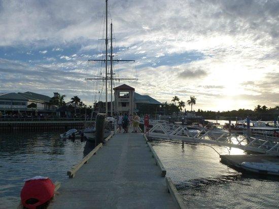 Port Denarau Marina: The Marina