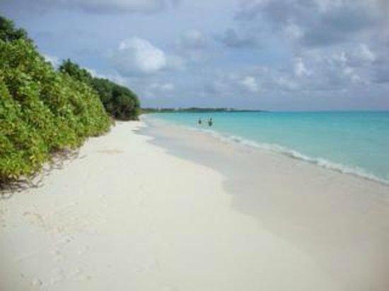 Holiday Home Kelaa : Kelaa Beach