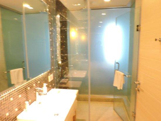 The Metropolitan Hotel & Spa New Delhi: washroom