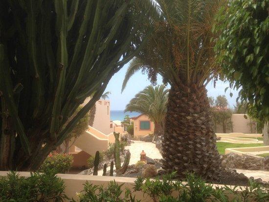 SENTIDO H10 Playa Esmeralda: vue de la chambre
