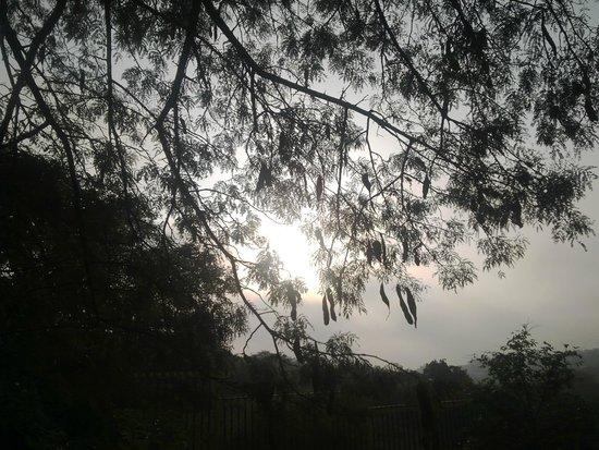 Vivanta by Taj Begumpet: Early Morning Walk in Hyderabad