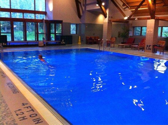 Hotel Alyeska: Pool area