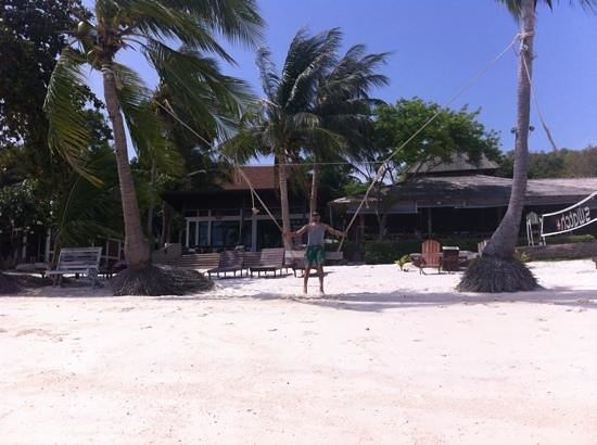 Cocohut Village Beach Resort & Spa : beach swing