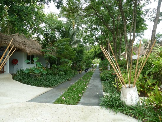 Eden Beach Bungalows: Les bungalows
