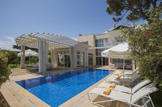 Papillon Ayscha: Presidential Villa Pool