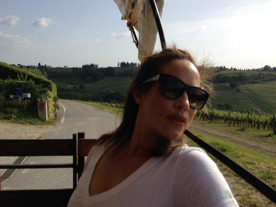 I Cocchieri di' Chianti: Relaxation
