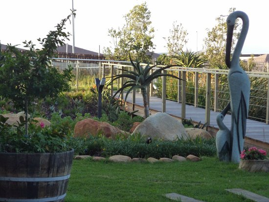 Hotel Verde Cape Town International Airport: jardin