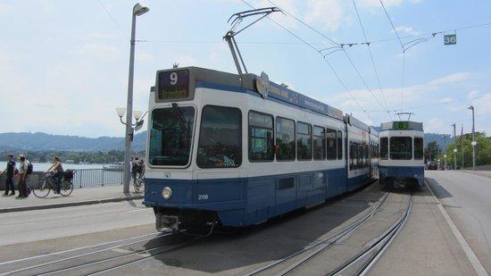 Old Town (Altstadt) : trams