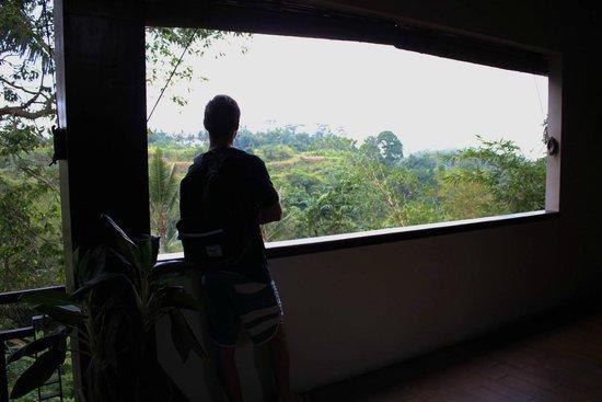 Ashoka Tree Resort Ubud: View from restaurant