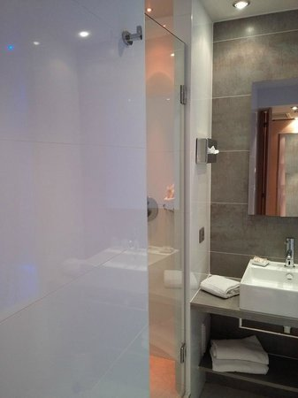 BEST WESTERN Le Lavarin : Shower