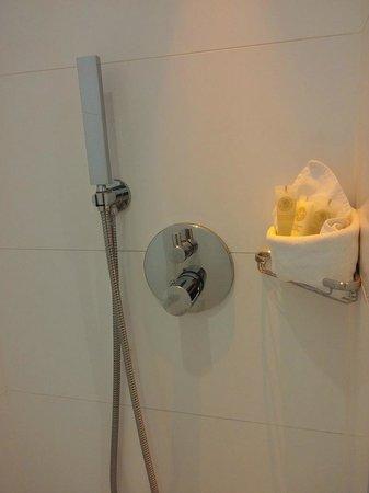 BEST WESTERN Le Lavarin: Shower