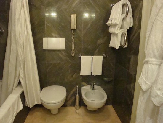 The Westin Excelsior, Rome : Rest of the bathroom