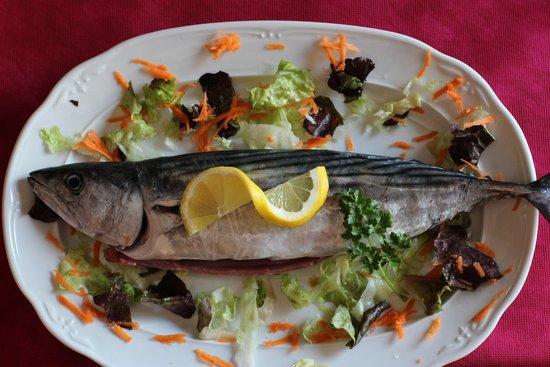 "Tasca Moraira : pescado fresco de ""lonja"" / fresh fish from moraira"