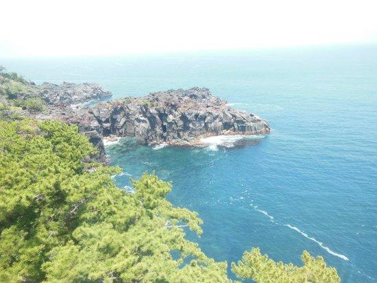 往返伊豆四季花園和城崎海岸的路 - Picture of Jogasaki Coast, Ito - TripAdvisor