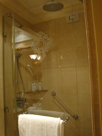 The St. Regis Rome : Very narrow shower, but workd well