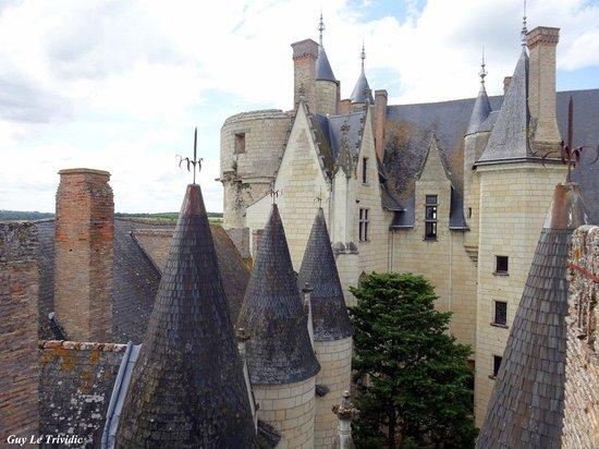 Chateau de Montreuil-Bellay : les toits du château