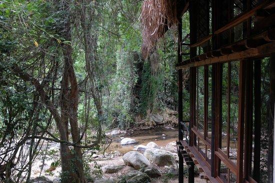 Ella Jungle Resort: View from the bathroom