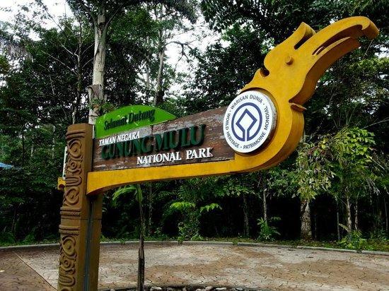 Mulu World Heritage Area: Mulu National Park :)