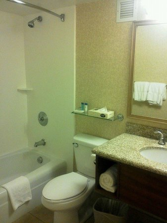 Airport Honolulu Hotel: バスルーム
