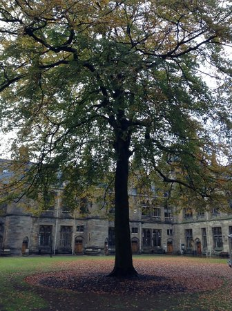 University of Glasgow: Beautiful in Autumn!
