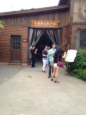 Giant Panda Breeding Research Base (Xiongmao Jidi): Sunshine Nursery Home
