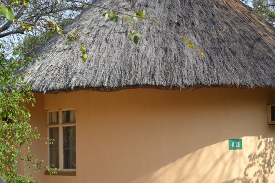Satara Rest Camp : Welcome to Satara. The accommodation...