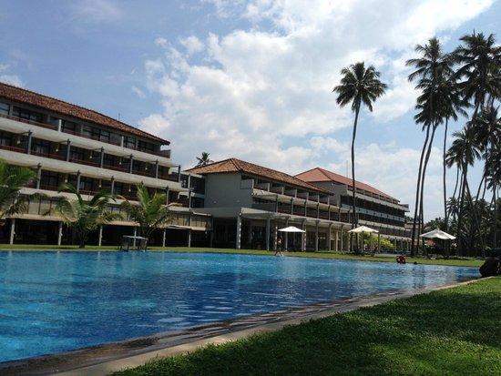 The Blue Water: La piscine