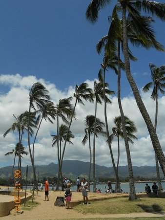 Haleiwa Beach Park: beach