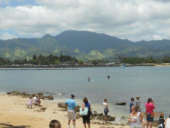 Haleiwa Beach Park: gorgeous views