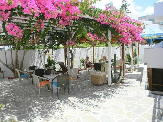 Cyclades Hotel and Studios: The garden area colourful and shaded