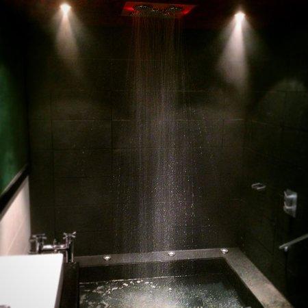 Malmaison Hotel: Wild bathroom