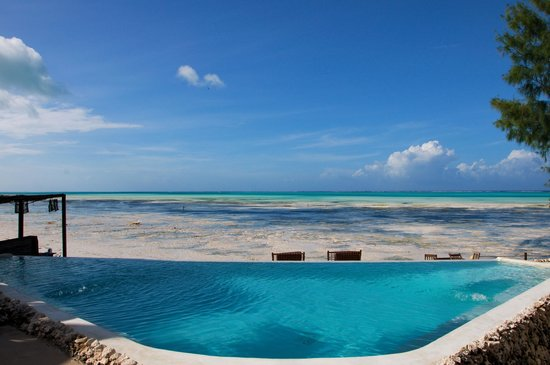 Coral Rock Zanzibar : Swimming pool with a view..