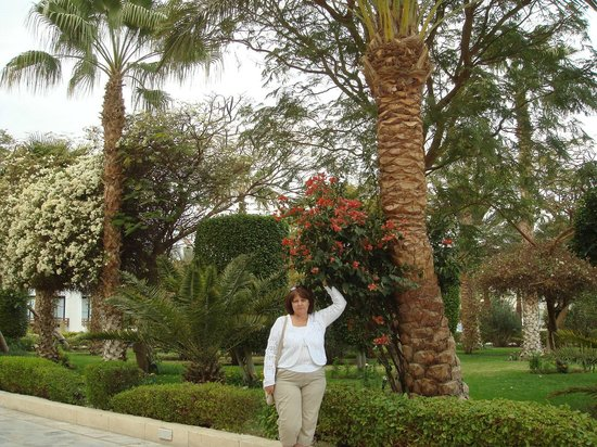 The Grand Hotel Hurghada: Территория