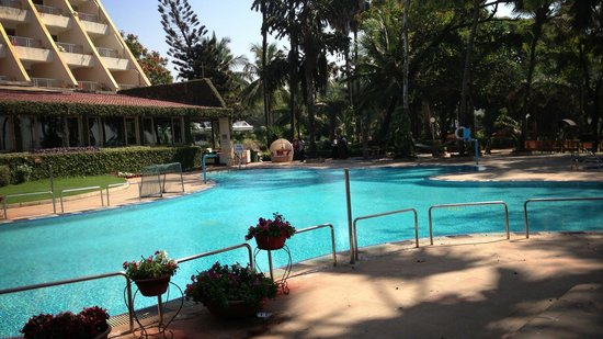 The Resort : Pool Side