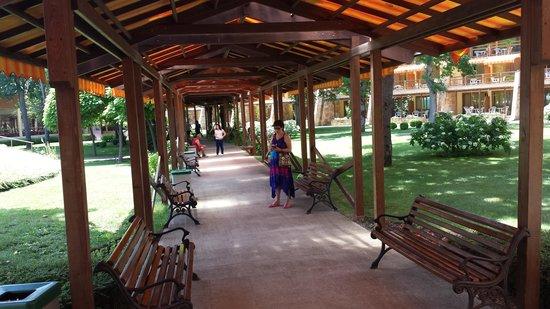 Les Magnolias Hotel : The Garden