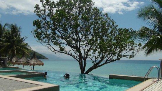 Tamaraw Beach Resort : Infinity Pool