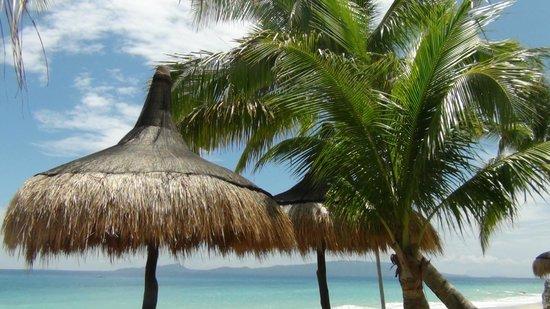 Tamaraw Beach Resort : Tamaraw Beach