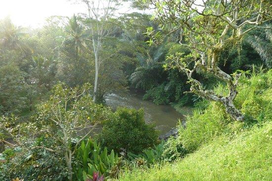 Villa Semana: Vue sur la rivière Ayunk