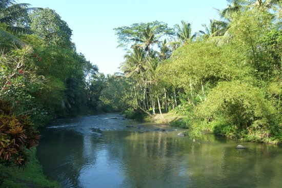 Villa Semana: La rivière Ayunk