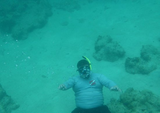 Castillo Tours: Recommended to bring your underwater camera!!!