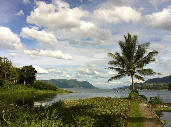 Liberta Homestay : Lake view