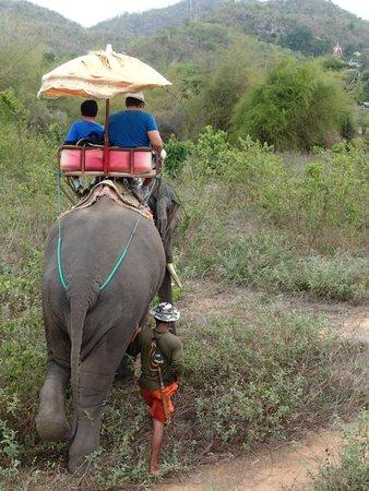 Hutsadin Elephant Foundation : Elephant Ride